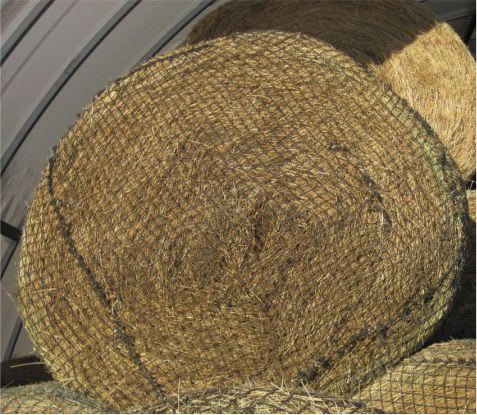 """22/"""" x 36/"""" LIME /& BLACK Slow Feed Hay Net W// Draw String Opening NEW HORSE TACK"""